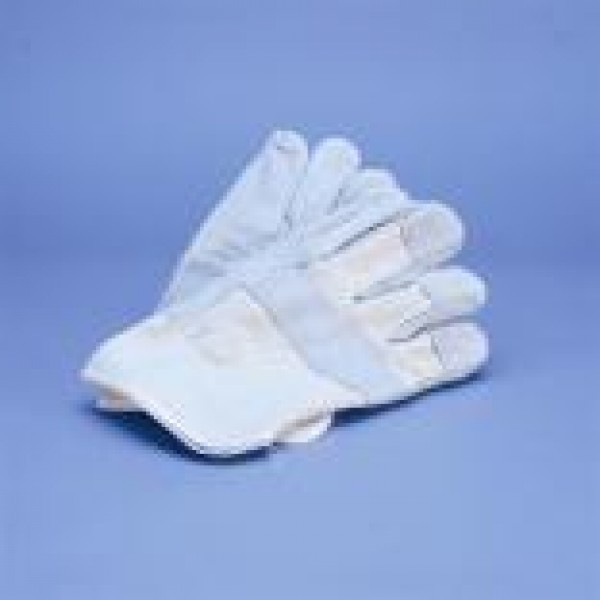 Canvas Glove with Leather Palm